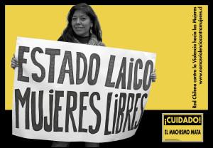 2014 estado laico mujeres libres (2)