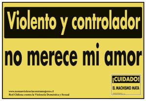 6 campaña 2009 violencia simbólica (3)
