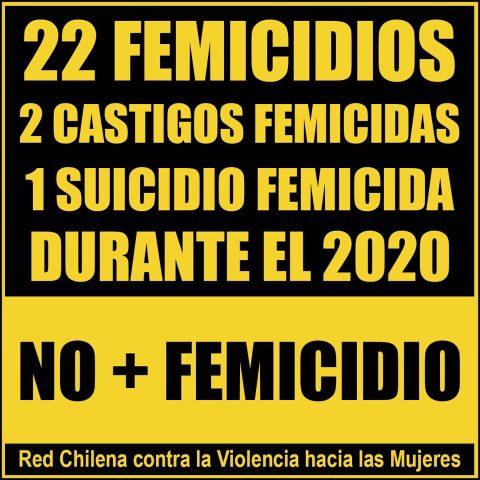 22 femicidios, 2 castigos femicidas, 1 suicidio femicida durante el 2020